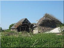 TR3451 : Barn in Great Mongeham Farm by David Anstiss