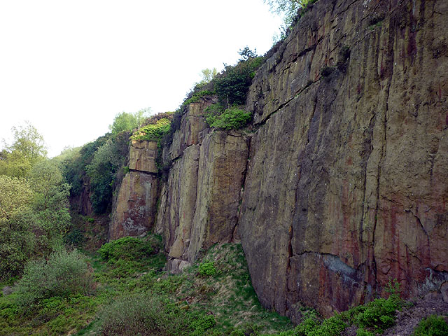The east end of Wilton One (Horrocks Fold) Quarry