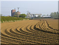 TA0355 : Field near Skerne Leys Farm by Paul Harrop