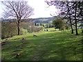 SD3688 : A sylvan scene near Finsthwaite by Raymond Knapman