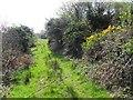C0435 : Ballymore Townland by Kenneth  Allen