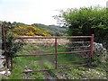 C0434 : Gate, Ballymore by Kenneth  Allen