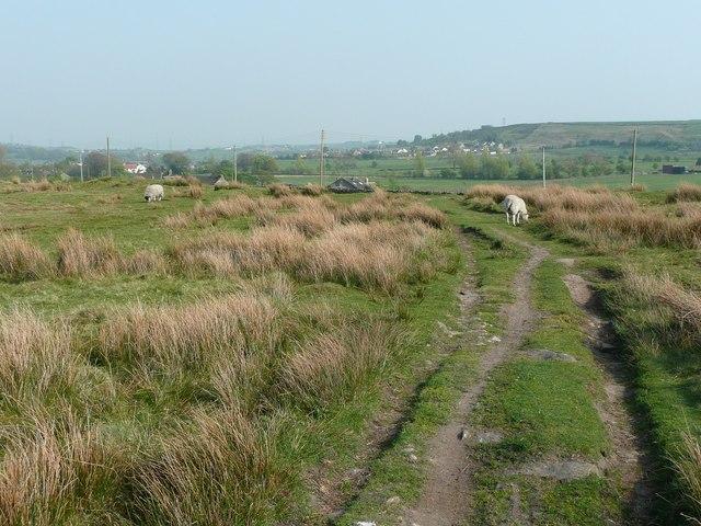 Bridleway on Black Moor, Cullingworth