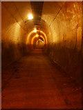 SE2800 : Inside Thurgoland Tunnel by Matthew Hatton