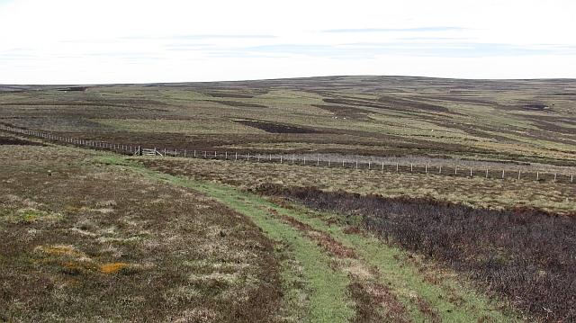 Fence, Dunside Hill