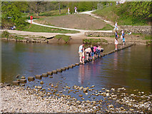 SE0754 : Stepping Stones at Bolton Abbey by Mike Smith