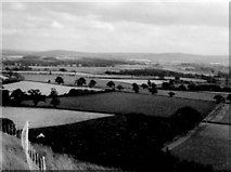 SJ4607 : Shropshire fields by Gerald England