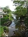 SN9391 : Afon Trannon downstream at Llawr-y-glyn by John M