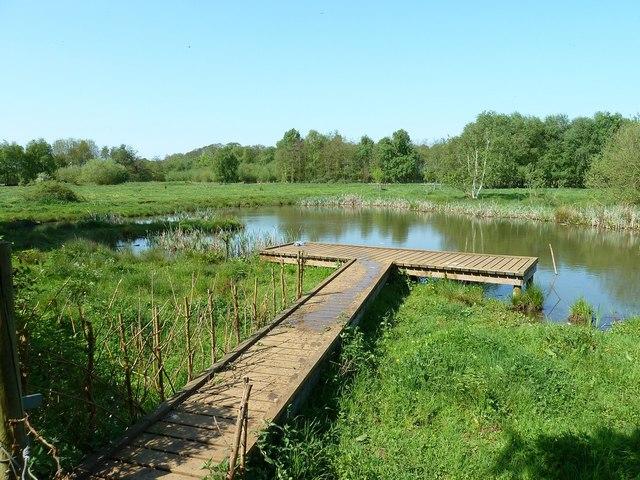 Pond, Flitton Moor