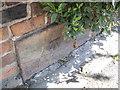 SJ4575 : Cut Mark: Manor Farm, Ince Lane, Elton by VBForever