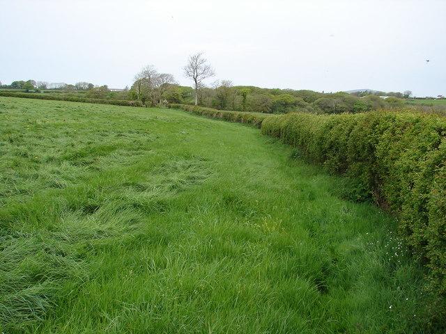 Footpath towards the A478