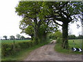 TM2768 : King's Lane bridleway to Tannington Long Lane & entrance to Down's Farm  Bungalow by Adrian Cable