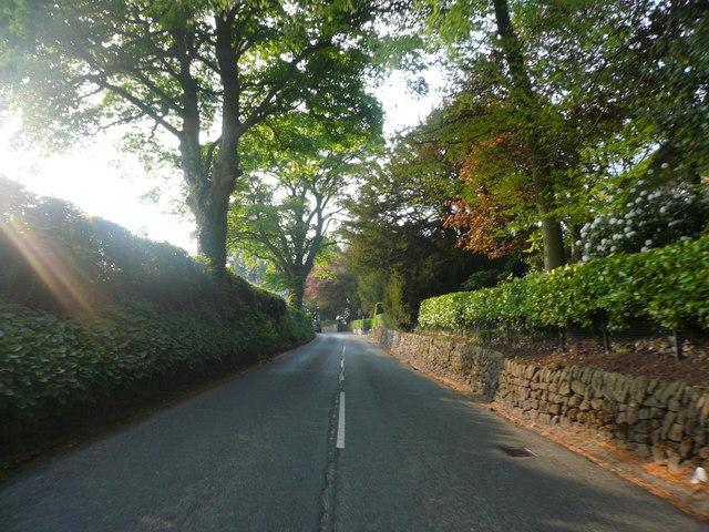 Wootton Lane - Farley