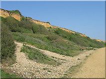 SZ2492 : Coastal slopes, Barton-on-Sea by Alex McGregor