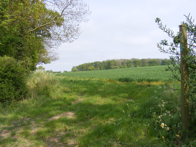 Footpath to Brabling Green