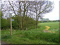 TM2966 : Footpath to Great Lodge Entrance by Adrian Cable