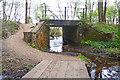 SU2200 : Flooded Footpath near Holmsley Inclosure by Mike Smith