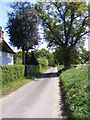 TM3458 : Hoo Lane, Little Glemham by Adrian Cable