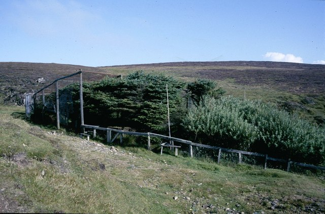 The Plantation, Fair Isle