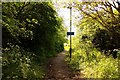 SU5894 : Footpath to Dorchester by Steve Daniels