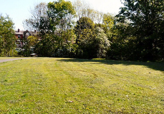 Mown Grass at Swains Valley