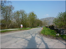 SD3097 : Lake Road, Coniston by Alexander P Kapp