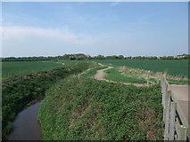 SK8159 : Cycle Route 64 alongside Slough Dyke by Tim Heaton