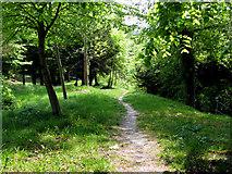 TQ3355 : Caterham:  Footpath leading off Church Hill by Dr Neil Clifton