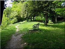 TQ3355 : Caterham:  Footpath off Church Hill by Dr Neil Clifton