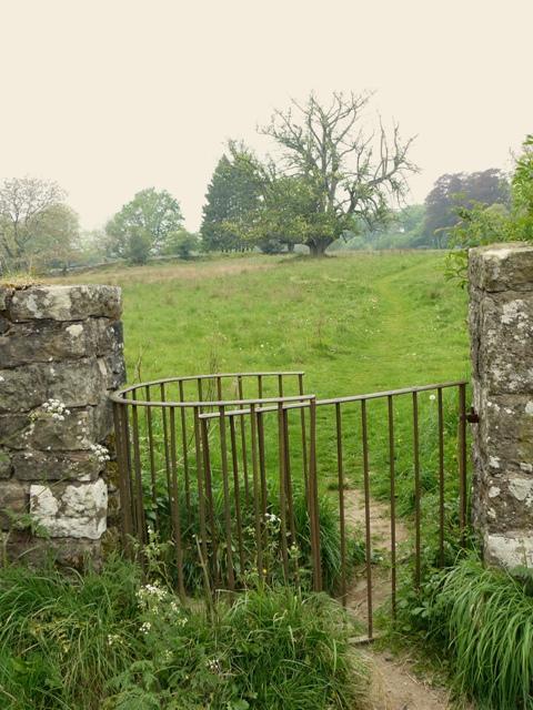 Kissing Gate leading to Cleddon Hall Footpath