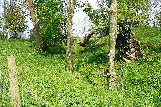Motte at Woodgarston Farm