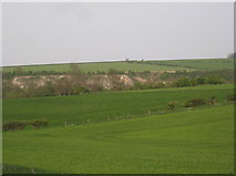 SE8565 : View towards the former chalk quarries at Wharram le Street by Jonathan Thacker