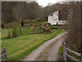 NM8163 : Garden of house in Scotstown by Trevor Littlewood