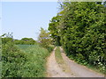 TM3463 : Footpath to The Gull, B1119 Saxmundham Road & Grove Road by Geographer