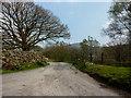 SD2396 : Road to Turner Hall Farm by Alexander P Kapp