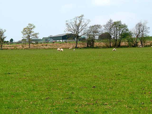 Farm at Stapleton