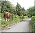 SO4208 : Old-style red phone box near Raglan by Jaggery