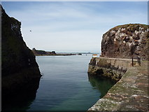 NT6779 : Coastal East Lothian ; The Narrow Entrance to Victoria Harbour, Dunbar by Richard West