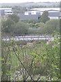 SP1691 : Rail bridge across River Tame by Michael Westley