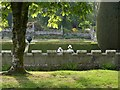 SX0863 : Gardens, Lanhydrock by Derek Harper
