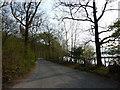 SD3094 : Road near Machells Coppice Car Park by Alexander P Kapp