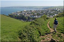 SW9980 : Path to Port Isaac by Derek Harper