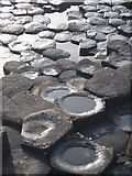 C9444 : Basalt columns on the Giant's Causeway by Rod Allday