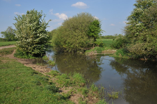 River Thames beside North Meadow