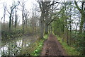 TQ0233 : Wey South Path , Wey and Arun Canal by N Chadwick