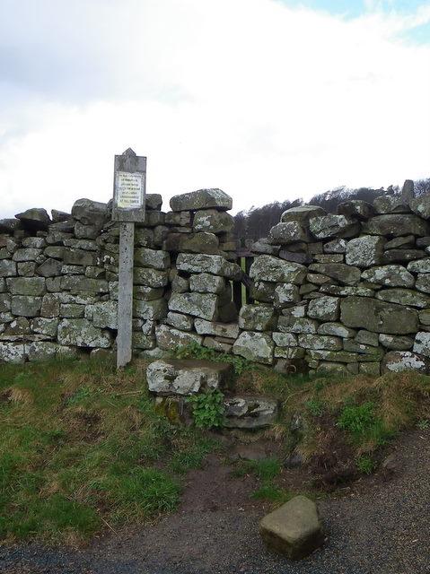 Stile and drystone wall near Fremington
