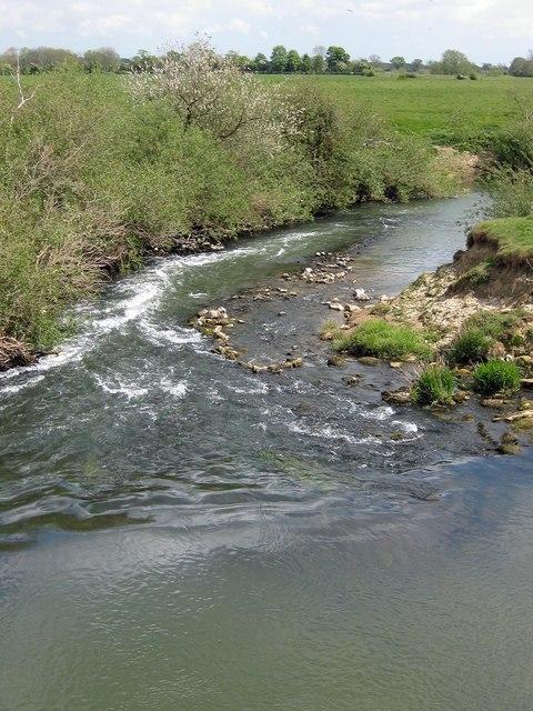 Ryton Rapids