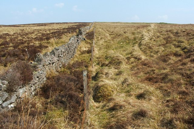 Dry-stone wall and older field boundary