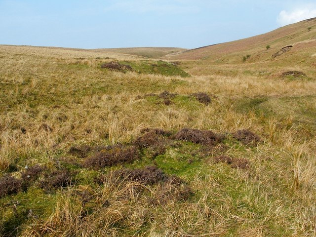 Mounds beside the Spouts Burn