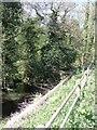 SK0040 : River Tean - downstream at Teanford by John M